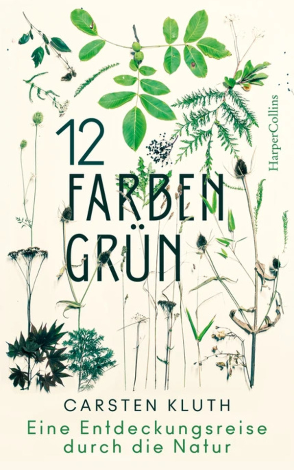 Book: 12 Fraben Grün by Carsten Kluth